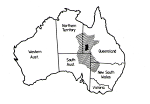 APPROXIMATE AREA OF WBOISIA HOPWODII CONSUMPTION (AFTER AISTON 1937 AND ROTH)